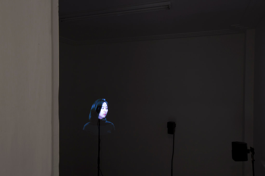 Gallery Vacancy installation view of Tao Hui's new work in exhibition